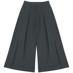Finery London Cresswell pleated culotte ($78) ❤ liked on Polyvore featuring pants, capris, anthracite, pleated wide leg pants, finery london, wide leg trousers, wide-leg pants and pleated trousers