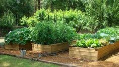 Farm to Preschool | Natural Learning Initiative