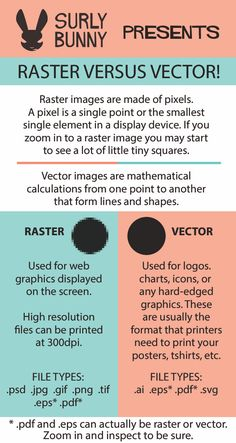 We love this infographic from SurlyBunny explaining the difference between raster and vector images. Lesia is such a talented artist and illustrator. We love having her on our team.