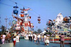 *m. Vintage Fantasyland