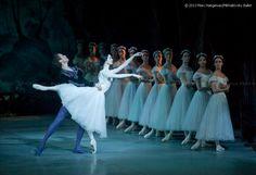 giselle ballet - Pesquisa Google