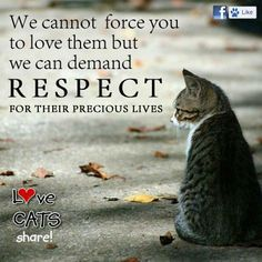 LOVE them and respect them <3