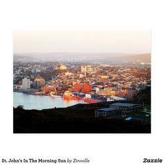 St. John's In The Morning Sun Postcard Signal Hill, Morning Sun, Newfoundland, Dog Design, Beautiful Landscapes, Funny Cats, Paris Skyline, Sunrise, St John's