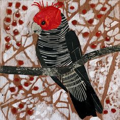 Gang Gang Cockatoo collage and linocut Star Darlings, Australian Birds, Creative Artwork, Cockatoo, Aboriginal Art, Bird Prints, Woodblock Print, Quilting Projects, Printmaking