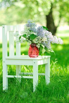 Love me some Lilacs
