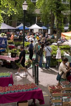 """Paris farmer's market. I wanted to try some cheese at a stand here, and Kyle said, """"no!! I don't want to eat flea market cheese!!"""" -.- so frustrating! Haha"""