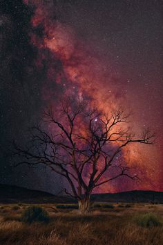 Master Photographer Peter Lik has spent over 35 years pushing the boundaries of fine art. A self-taught pioneer in the field of landscape photography, Lik is internationally renowned for capturing the beauty and raw power of the world around us. Beautiful Sky, Beautiful Landscapes, Beautiful World, Beautiful Places, Cool Landscapes, Peter Lik Photography, Landscape Photography, Nature Photography, Scenary Photography