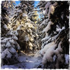 Snow, Country, Outdoor, Outdoors, Rural Area, Country Music, Outdoor Games, Outdoor Living, Eyes