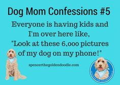 Dog Mom Confession -