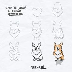 cadenceabsolutely: My new ig series: How to Draw… A Corgi ;P Obtain your best Corgi equipment exclusively at Corgilover. Cute Corgi, Corgi Dog, Corgi Funny, Haski Dog, Mom Funny, Dachshund, Corgi Drawing, Dog Art, Easy Drawings