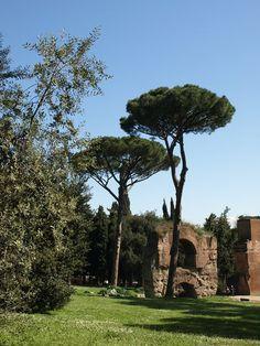 Palantine, Rome