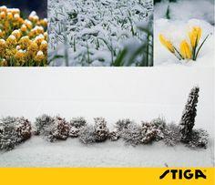 Als er sneeuw op uw gazon ligt, loopt u er beter niet over om schade aan het gras te voorkomen. Laat de sneeuw gerust liggen om de ondergrond te isoleren.