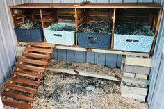DIY chicken nesting box projects ideas chicken coops Mum's amazing DIY Kmart hack transforms her backyard