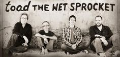 All I Want is More Toad the Wet Sprocket. We sat down with Glen Phillips to discuss Toad's first record in 16 years!