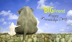 Happy Friendship Day Wishes HD Wallpapers/Whatsapp status HD Friendship Day Quotes Images, Happy Friendship Day Messages, Best Friendship, Friend Friendship, Hd Quotes, Wish Quotes, Wallpaper For Whatsapp Dp, Friendship Day Wallpaper, Status Wallpaper