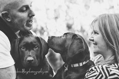 Frasier and Niles – Melbourne dog photographer Dog Photography, Cuddling, Melbourne, Labrador Retriever, Told You So, Kitty, Puppies, Couple Photos, Cats