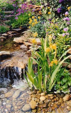 Internet Gardens Water Features Whats New Cascade Head of Garden Stream So possible in North Arlington and other areas where hills and wetweather creeks scream Make me. Backyard Stream, Garden Stream, Ponds Backyard, Backyard Waterfalls, Modern Backyard, Backyard Ideas, Diy Water Feature, Backyard Water Feature, Pond Landscaping