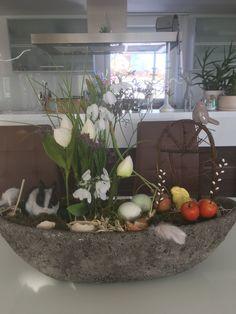 Aquarium, Plants, Hobbies, Goldfish Bowl, Aquarium Fish Tank, Plant, Aquarius, Planets, Fish Tank