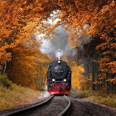 "47.6k Likes, 211 Comments - EARTH FOCUS (@earthfocus) on Instagram: ""Autumn journey, Germany. Photo by: © Alexander Riek. Explore. Share. Inspire: #earthfocus"""
