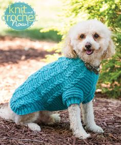 Free Knitting Pattern Download -- This Cable Dog Sweater, designed by Esther Bozak, is featured in episode 404 of Knit and Crochet Now! TV. Learn more here: www.knitandcrochetnow.com