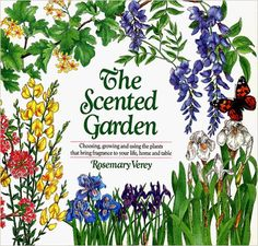 The American Woodland Garden Capturing the Spirit of the