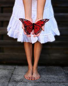 Google Image Result for http://faschismus.tk/uploads/butterfly-kisses-128204.jpg