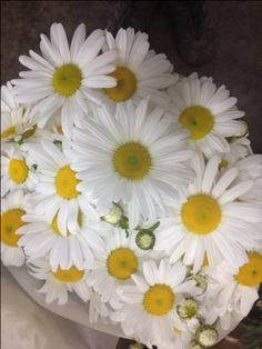 Sold in bunches of 20 stems from the Flowermonger the wholesale floral home delivery service. Daisy Flowers, Cream Flowers, White Flowers, Diy Wedding Flowers, Flower Bouquet Wedding, Stems, Delicate, Delivery, Shades
