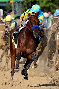 American Pharoah winning The Belmont ~ June 6, 2015 ~ that stride, tho'