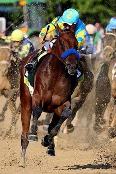 American Pharoah winning The Belmont ~ June 6, 2015 ~ that stride, tho'