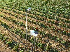 Pessl, misurazioni precise per raccolti al top A Eima 2014 Metos®NPK per la gestione di precisione della fertirrigazione, il servizio di previsioni meteo localizzato iMeteoPRO® e CropView®, sistema di monitoraggio visivo da remoto