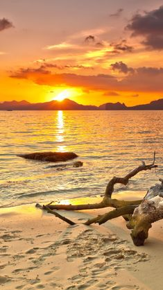 Philippine Beach Sunset, beach, sun, clouds, water, waves, rock, wood, footprints, foot steps, sand, beautiful, clouds, cloudy sky, sun, sunbeams, sparkle, panorama, Ocean view, photo.