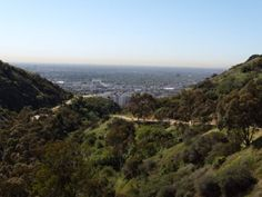 Runyon Canyon, Hollywood, California