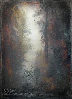 memory of shadows by dyrkwyst pixioo