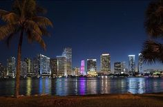 Choose your favorite miami skyline photographs from millions of available designs. All miami skyline photographs ship within 48 hours and include a money-back guarantee. Miami City, Downtown Miami, Florida Travel, Miami Florida, Miami Beach, Miami Pictures, Insta Pictures, Miami Skyline, Night Skyline