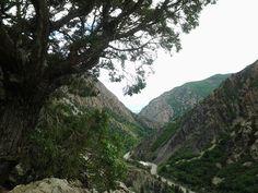 My secret spot- Big Cottonwood Canyon