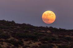 Blue moon August 2013. Prepare to be awed by this stunning shot of an orange-hued seasonal blue moon sinking below the arid hills of Santee, Calif.