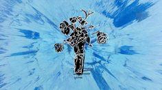 Ed Sheeran- SUPERMARKET FLOWERS Guitar Chords