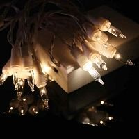 Whether you are filling a container for a centerpiece or accenting a children's costume, these white battery sets are great for a wide variety of projects. Christmas Centerpieces, Table Centerpieces, Christmas Decorations, Battery Candles, Battery Lights, Battery Operated Christmas Lights, Christmas Tree Bulbs, Glass Brick, Traditional Christmas Tree