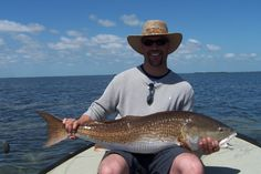 1 of a few Trophy Redfish of the day!