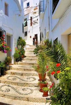 99 Meilleures Images Du Tableau Andalousie Andalousie Espagne Et Voyage Espagne