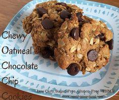 Trim Healthy Mama Chocolate Chip Cookies - Yummy chocolate chip cookies for THM!
