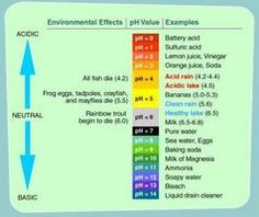 How Does Alkalinity Affect Water? thumbnail