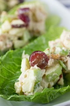 Low carb and high in protein Chicken and Apple Salad Lettuce Cups - just the kind of thing that I have been looking for! I like Chicken Salad with grapes and nuts - so fresh tasting, and easy, too. TIP: I swapped out the Mayo and Yogurt for Fat-Free Sour Cream, and it was AWESOME! Even hubby liked it, and he hates healthy stuff..~~ Houston Foodlovers Book Club