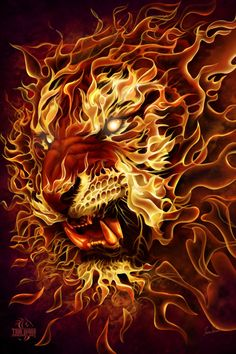 Fire Lion Poster - All the better to eat you! Fantasy Creatures, Mythical Creatures, Fantasy Kunst, Fantasy Art, Art Internet, Fire Lion, Lion Poster, Lion Wallpaper, Fire Art