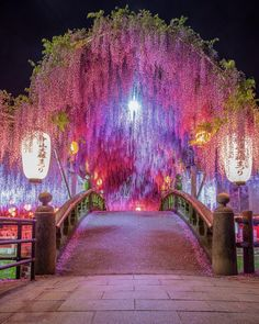 Japan Travel: We often describe places as magical, mind-blowing, phenomenal, or amazing – and … Beautiful Places To Travel, Beautiful World, Beautiful Gardens, Japanese Landscape, Fantasy Landscape, Beautiful Nature Wallpaper, Beautiful Landscapes, Nature Pictures, Beautiful Pictures