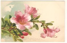 US $6.00 Used in Collectibles, Postcards, Artist Signed
