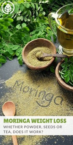 Moringa weight loss teas, pills and powders have become a popular all-natural remedy. But does moringa really work if you're trying to lose weight? #weightloss #moringa #allnatural | allnaturalideas.com via @allnaturalideas