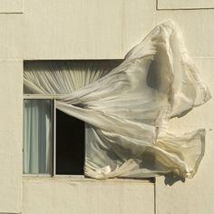 Addington, Durban, Kwazulu Natal Window | par Niquitin