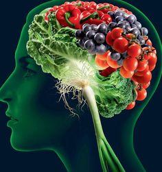 Ce legatura poate avea mancarea cu functionarea creierului? Ei bine, una foarte stransa. Desi am stiut dintotdeauna ca ceea ce mancam ne afecteaza corpul si felul in care aratam, cercetatorii invata acum tot mai multe si despre felul in care ceea ce mancam ne influenteaza creierul. Da, se pare ca pentru materia noastra cenusie conteaza...