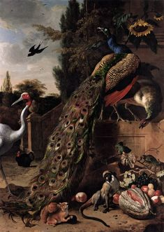 Like earlier still-life painters, Hondecoeter turned curiosities of nature into curiosities of art, and into elements of interior decoration. The peafowl, the crane, the monkey, the squirrel, and the swallow are repeated in other compositions by Hondecoeter. In his work as a whole one finds peacocks, peahens, turkeys,ducks and hens studied in various poses and from different angles.